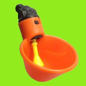2-Chicken-Drinker-Cups-Automatic-Poultry-Waterer-Water-Drink-Cup-bird-plastic