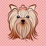 My Little Yorkies Boutique 2