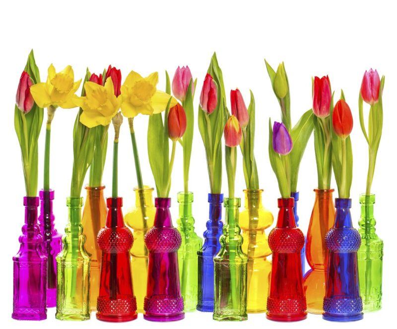 Pastell ist in – aber bei frischen Blumen darf es gerne richtig bunt zugehen