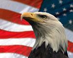 AMERICAN PRIDE HEADWEARS