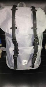 Modern Mens/ Unisex backpack