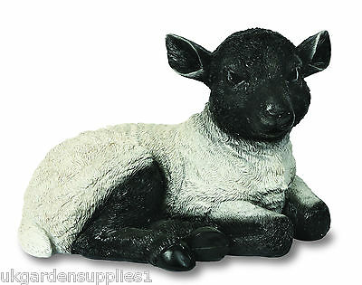 Laying Down Black and White Lamb Ornament - Figure - Animal Statue - Sheep Resin