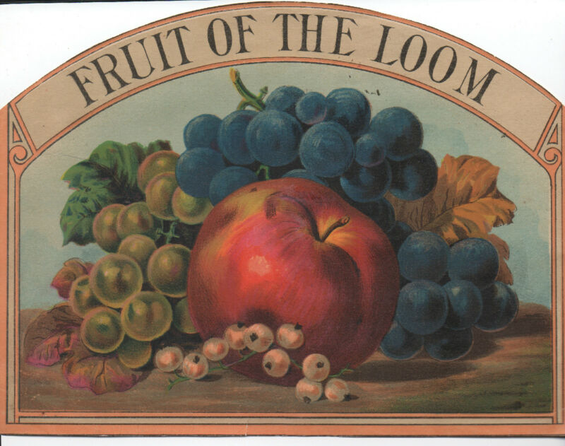 1880s Color Paper Advertising Sign for Fruit of the Loom