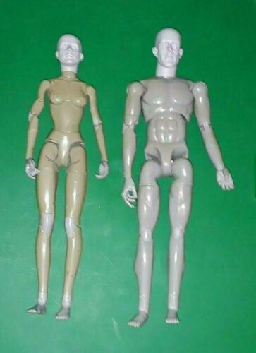 """Sideshow Collectibles: Life like Artist Models 1/6 Scale 12"""" Male and 11"""" Female"""