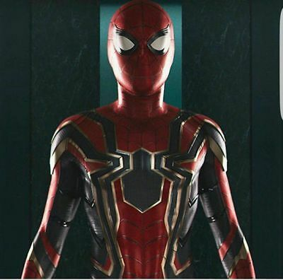 Iron Spiderman Adult Spider-Man Homecoming Halloween Cosplay Costume 3D printing - Adult Spider Costume