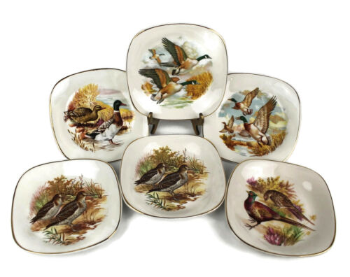 6 Vintage Enoch Wedgwood Tunstall Ltd Plates - Wild Game Birds Ducks, Pheasants