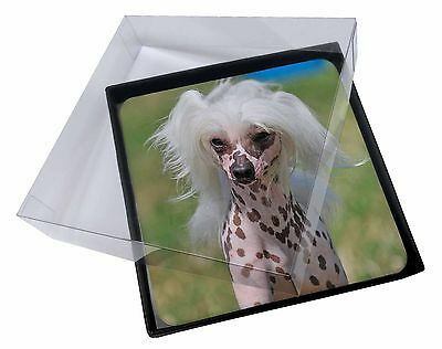 4x Chinese Crested Dog Picture Table Coasters Set in Gift Box, AD-CHC4C