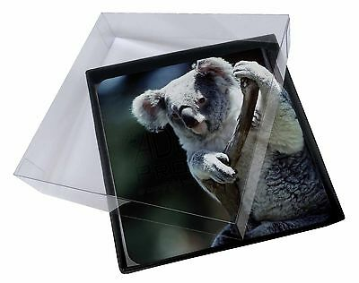 4x Cute Koala Bear Picture Table Coasters Set in Gift Box, AKB-1C