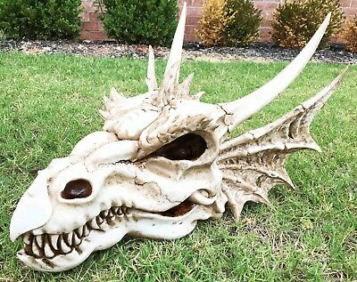 "Large Elder Dragon Skull Statue Legendary Erathia Fossil Skeleton 18""L Figurine"