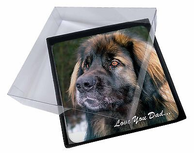 4x Leonberger Dog 'Love You Dad' Picture Table Coasters Set in Gift Box, DAD-68C