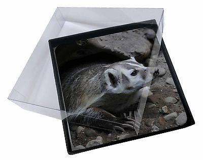 4 x Tasso in Guardia Foto Tavolo Set Di Sottobicchieri in scatola regalo, ABA-2C
