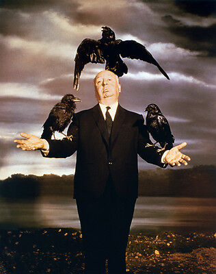 ALFRED HITCHCOCK - THE BIRDS - 1963 HORROR FILM MOVIE CLASSIC 8X10 PHOTO