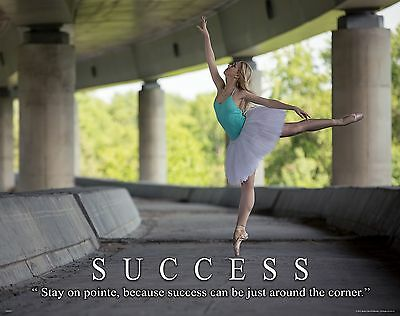 Ballet Dance Motivational Poster Art Print Shoes Flats Tutu Leotard Skirt Mvp507