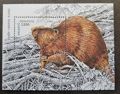 Belarus Wildlife European Beaver 1996 Fauna (miniature sheet) MNH