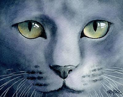 GRAY CAT Painting RUSSIAN BLUE 8 x 10 Art Print Signed by Artist DJR