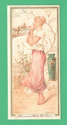 RARE 1880'S HILDESHEIMER & FAULKNER NEW YEAR GREETING CARD LADY BIRD-BATH VASE