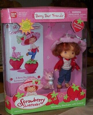 Z3  Strawberry Shortcake & Custard Cat -- Berry Best Friends!  Brand New!