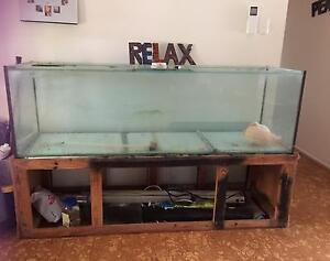 HUGE Tank plus loads of extras Redcliffe Redcliffe Area Preview