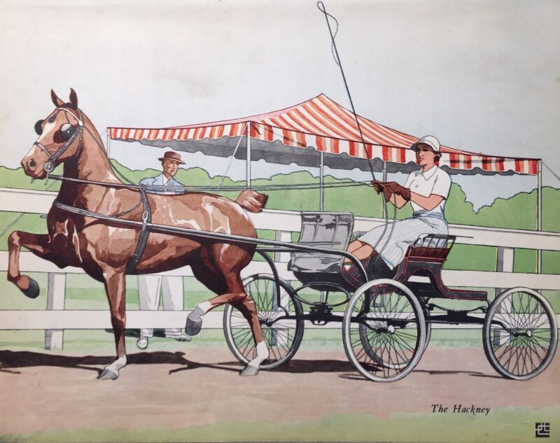 VINTAGE 1938  HACKNEY PONY AT HORSE SHOW WOMAN DRIVER AND JUDGE HORSE Art Print