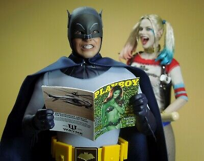1/6 Scale Custom Playboy - Poison Ivy - full interior, Batman Bruce Wayne](Poison Ivy Customes)