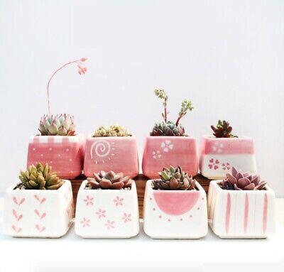 Pink Flower Pot - Lovely Pink Ceramic Succulent Planter Miniature Flower Pots Garden Planter Pot