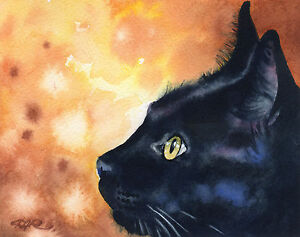BLACK CAT Watercolor Painting 8 x 10 Art Print Signed by Artist DJR