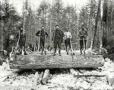 Logging in Northwood Michigan 1899 Old Vintage photo print Antique History