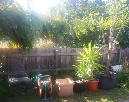 Gorgeous Pots Plants Hose Reel and Rustic Cast iron Chair