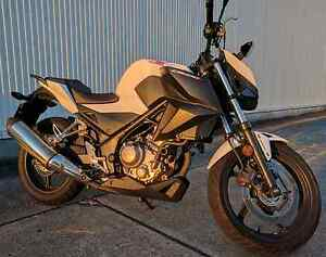 Honda CB300F Windsor Brisbane North East Preview