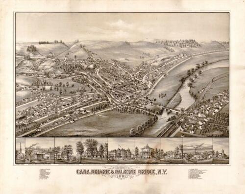 1881 CANAJOHARIE PALATINE BRIDGE NEW YORK panoramic map GENEALOGY poster ny26