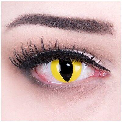 Farbige Halloween Fasching Kontaktlinsen gelb schwarz Cat Eye + Behälter