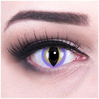 Lila Katzenaugen Kontaktlinsen für Halloween Fasching Modell: Purple Dragon