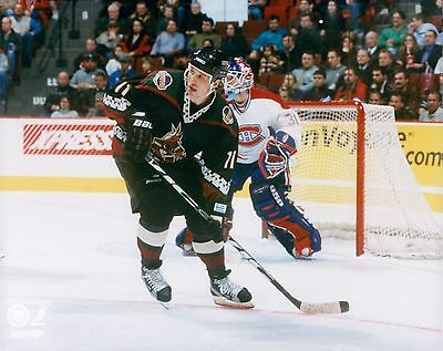 Dallas Drake Phoenix Coyotes Licensed Unsigned NHL Glossy 8x10 Photo -