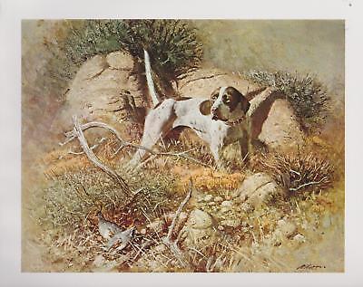 "Robert K. Abbett,  ""Good Point"", Birds, Hunting  Dog, Pointer - Art Print---"