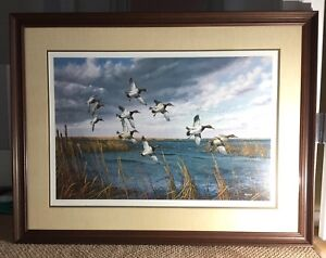 David Maass: Signed and Numbered, Framed Print
