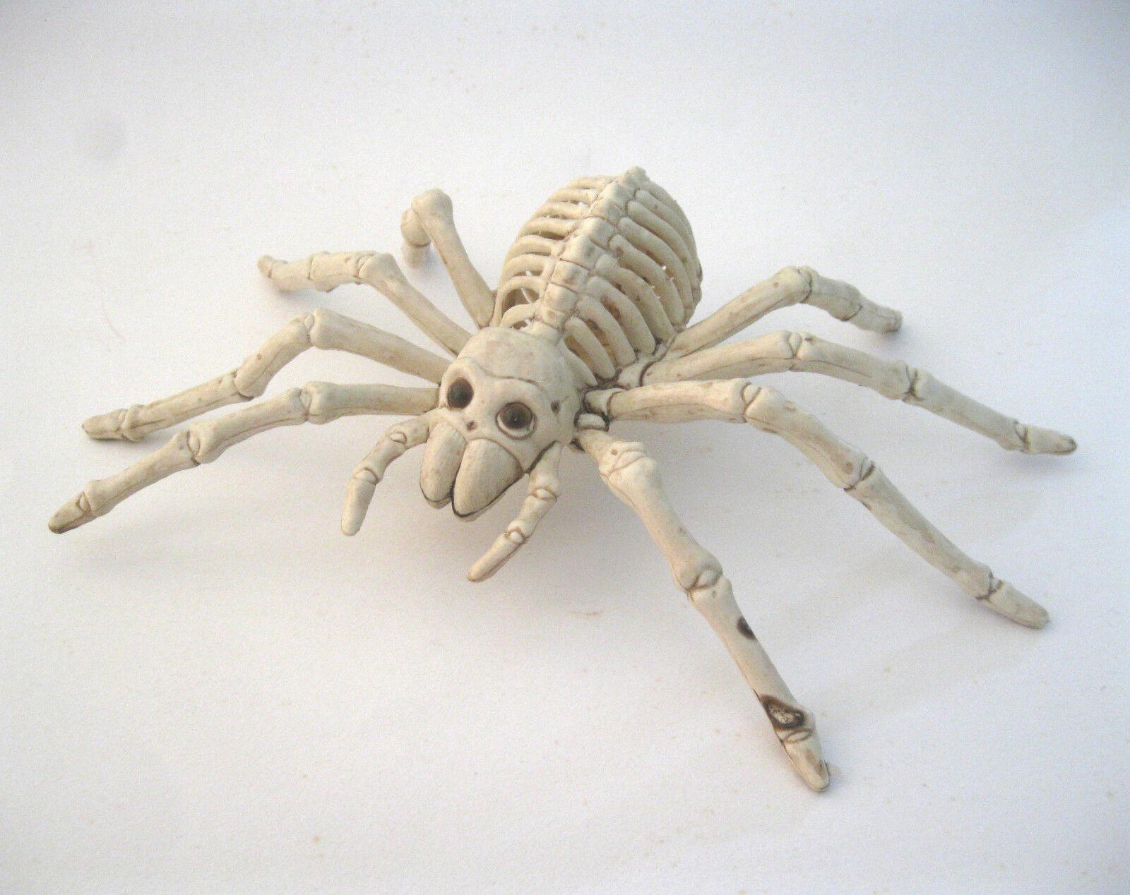 Skeleton Halloween Prop