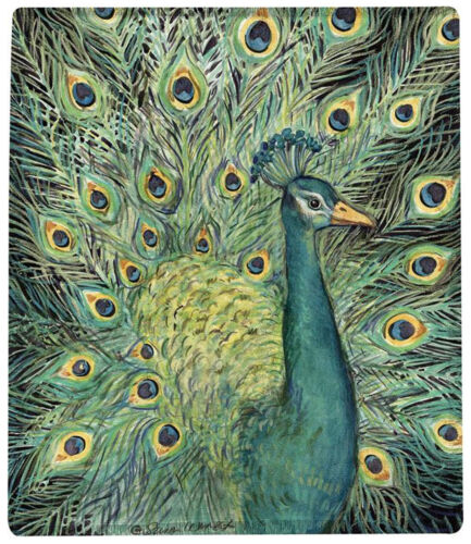 "THROWS -  ""MAJESTIC PEACOCK"" THROW BLANKET - 50"" X 60"""