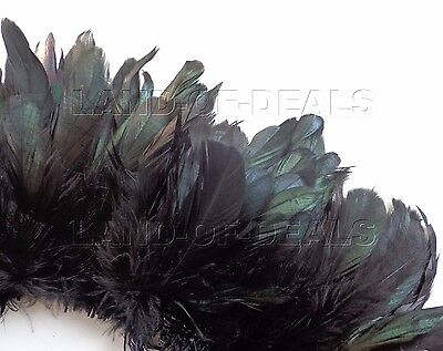 120+ small Black rooster coque feathers IRIDISCENT tail feathers bulk wholesale