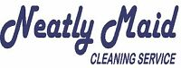 Residential Home Cleaner