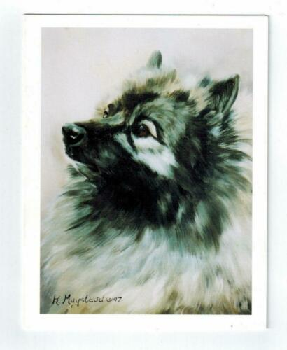 New Keeshond Head Study Notecard Set - 12 Note Cards By Ruth Maystead KEE-2