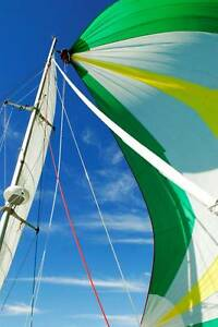 Catamaran Performance Commercial built 2Csurvey & registered Jacobs Well Gold Coast North Preview