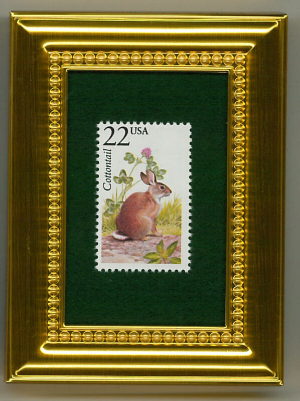COTTONTAIL RABBIT  - A COLLECTIBLE GLASS  FRAMED POSTAGE MASTERPIECE!