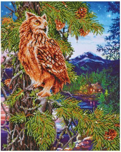 Diamond Dotz Owl Diamond Embroidery Facet Art Kit 21.5