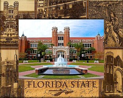 Florida State University Laser Engraved Wood Picture Frame (5 x 7) ()