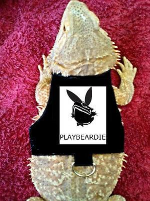 Lil' Bestie Bearded Dragon reptile Harness and Leash PLAYBEARDIE