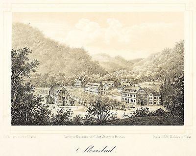 ALEXISBAD (HARZGERODE) - GESAMTANSICHT - Frank - Tonlithografie 1852