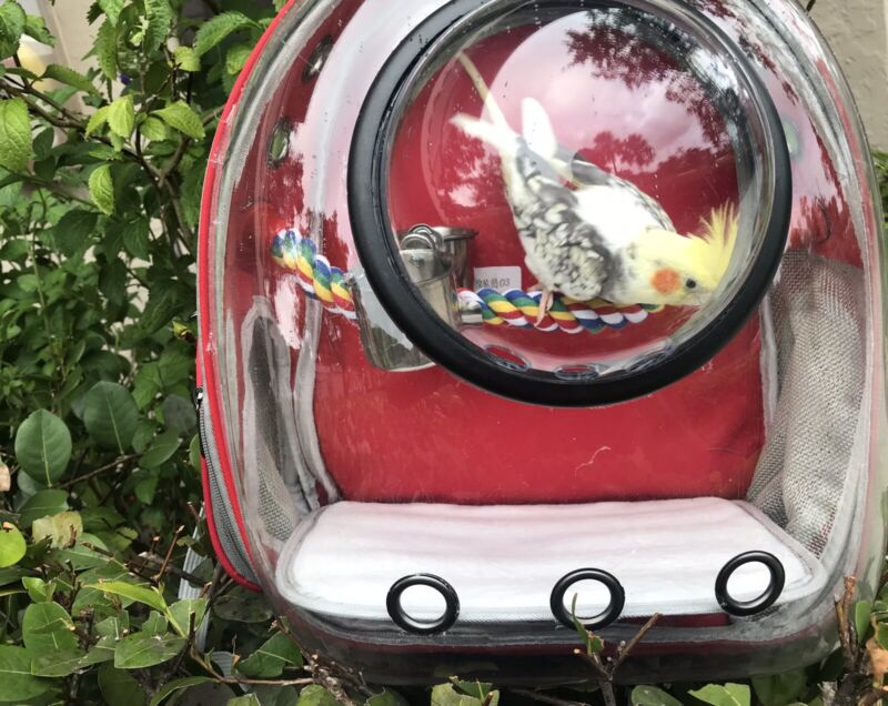 Bubble Bird Travel Carrier Backpack with Stainless Steel Tray and Standing Perch