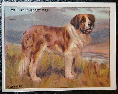 ST BERNARD     Original Vintage   Colour Card  VGC