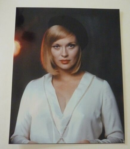 Faye Dunaway Actor Sexy 8x10 Color Promo Photo