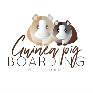 Melbourne Guinea Pig Boarding Pearcedale Casey Area Preview